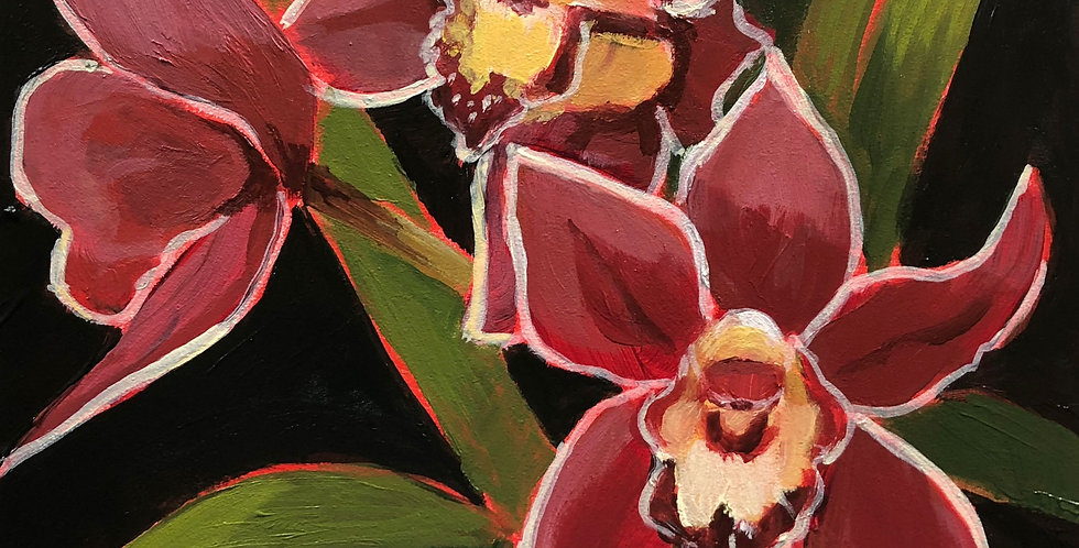 Burgundy Cybidium Orchid
