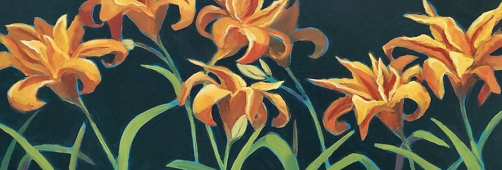 Kwanso Daylilies