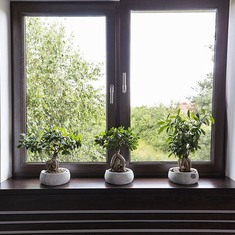 Window Decor With Plants Idea