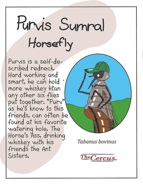 Purvis Explained-05.jpg