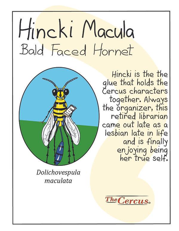 Hincki Explained-05.jpg