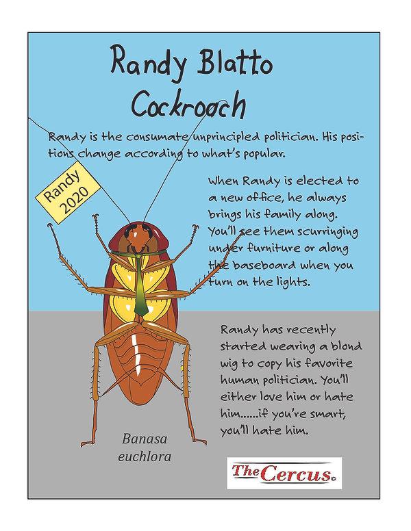 Randy Explained-05.jpg