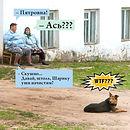 "Ветеринарная клиника ""От Носа до Хвоста"", Москва (495) 589-8554, ветеринарные услуги, ежедневно"