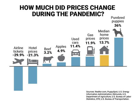 Think Home Prices Have Gone Crazy Since the Pandemic? Try Purchasing a Puppy