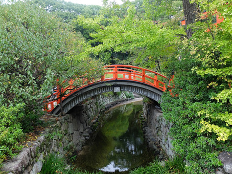 Sweet Memories of Takarazuka: Renée Cohen