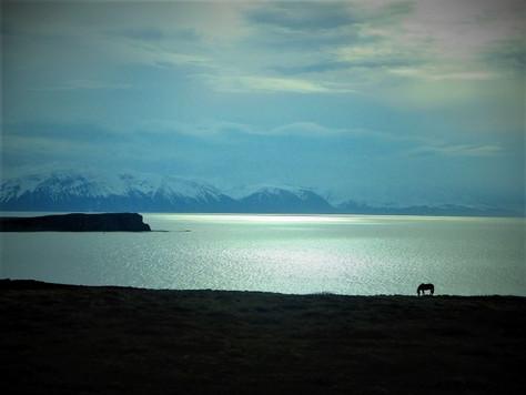 Ocean tišine: Tibor Weiner Sennyey