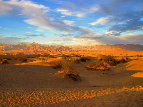Landscape: Natalie Crick