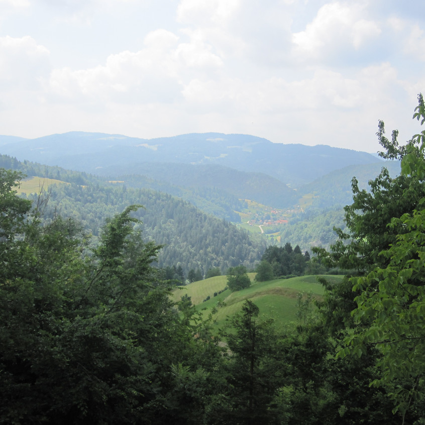 M Mazek View Beside St. Jederti