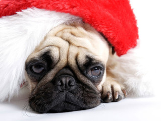 How To Survive The Christmas Blues