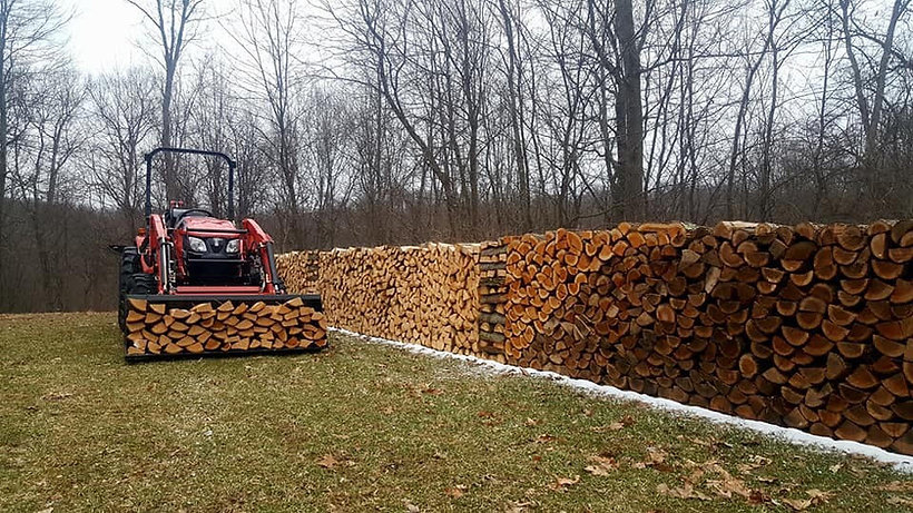 RK37 and firewood.jpg