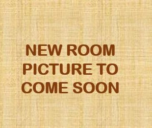 The New Room