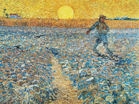Making Progress - Sunday 12th July and the Parable of the Sower