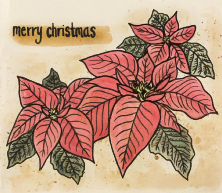Merry Christmas Card (with poinsettias)