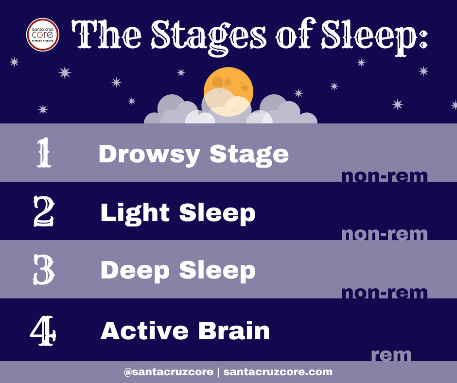 The Stages of Sleep meme