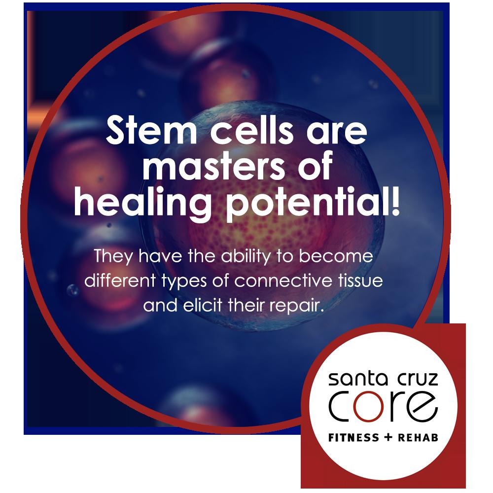 Stem Cells meme
