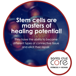 Stem Cells meme