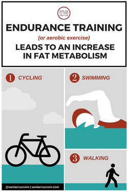 Fat Metabolism meme