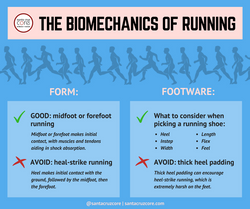 Biomechanics of Running meme
