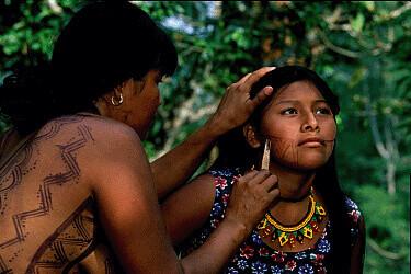 jagua-amérindien2.jpg