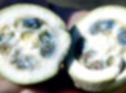 jagwa-un-fruit-tropical-amazonie.jpg