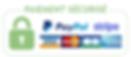 Logo_Paiement_large.png
