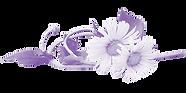 Dandelion-purple.png