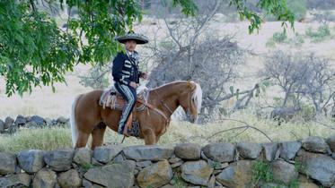 emiliano cadena a caballo charro musica mexicana