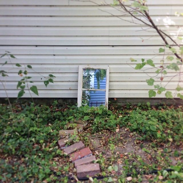 Photo of an old mirror resting up against a white-paneled building amidst growing green plants and a little trail of bricks leading to it.
