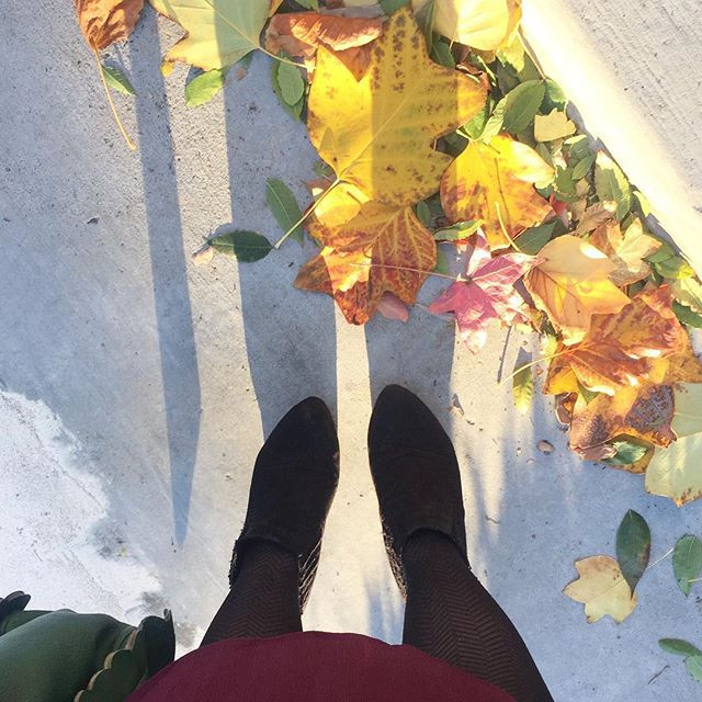 View of Kimberly's feet standing on sunlit pavement with a mix of fall and spring leaves, shadow stretching out in front of her.