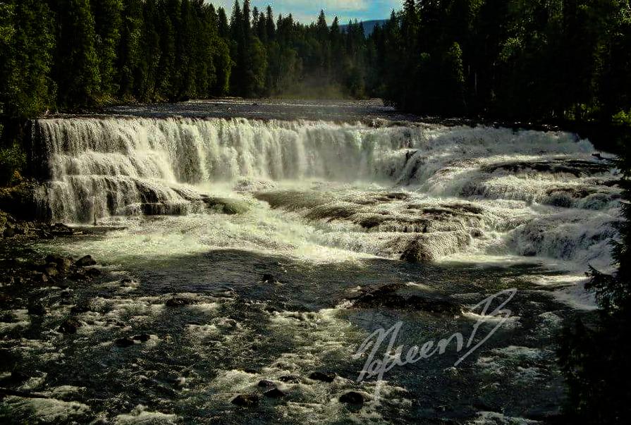 Dawson Falls Close Up