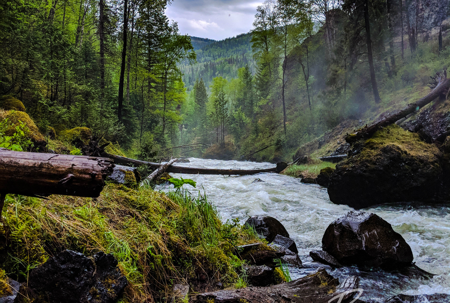 Grouse Creek