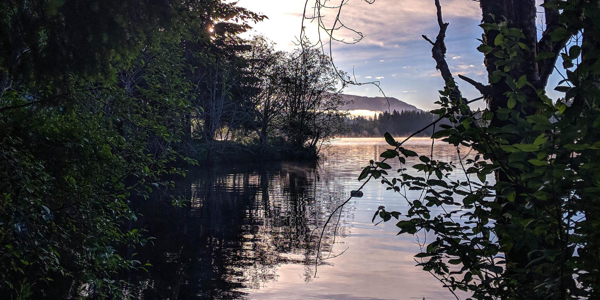 Mesachie Lake Reflection