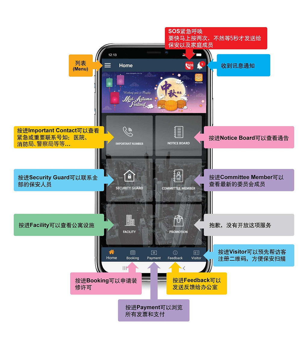 Chinese-Basic-PG1.jpg