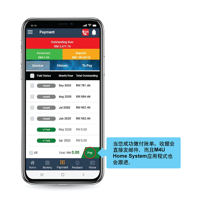 Chinese_Make-Payment-Step-3.png