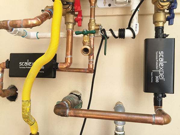 scalexpel300-Tankless-water-heater-IMG_0