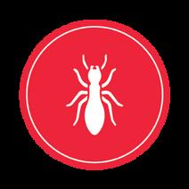 diagnostic immobilier roquevaire 13360, diagnostic termites à Roquevaire 13360.