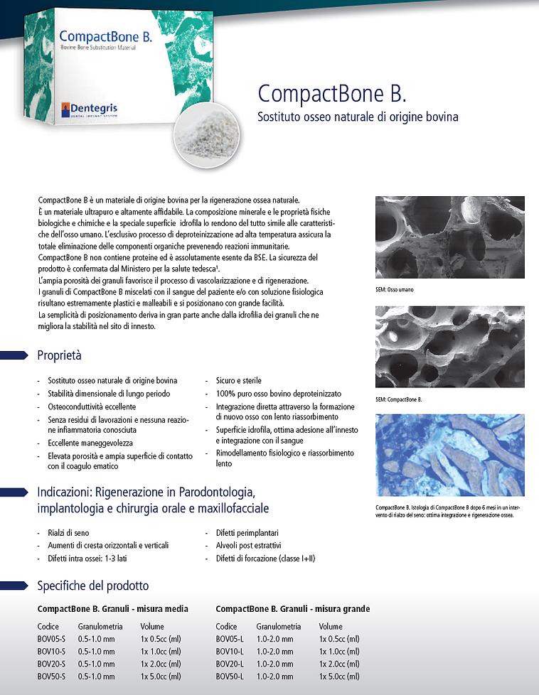 Compact Bone B