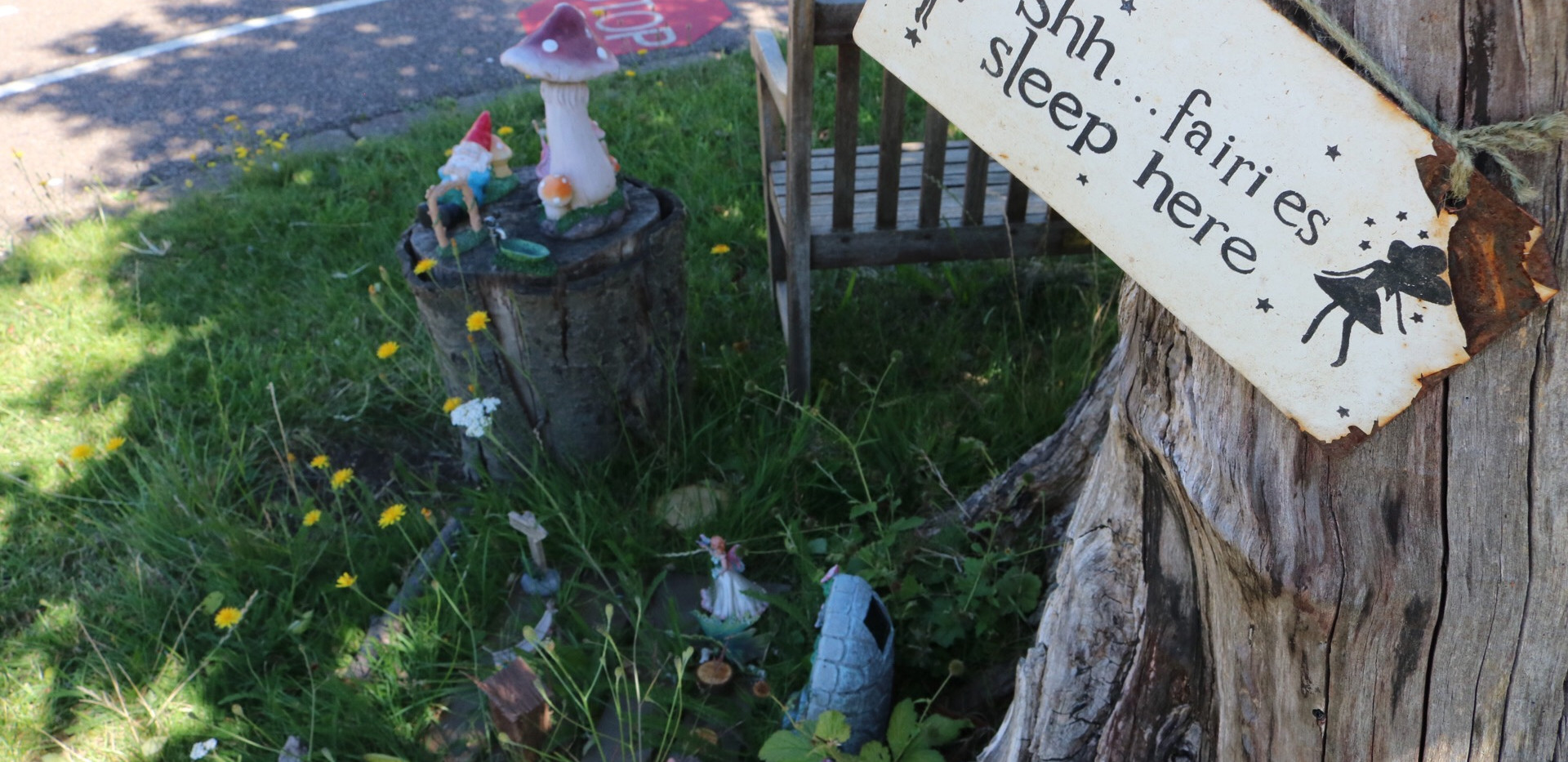 Where our fairies live