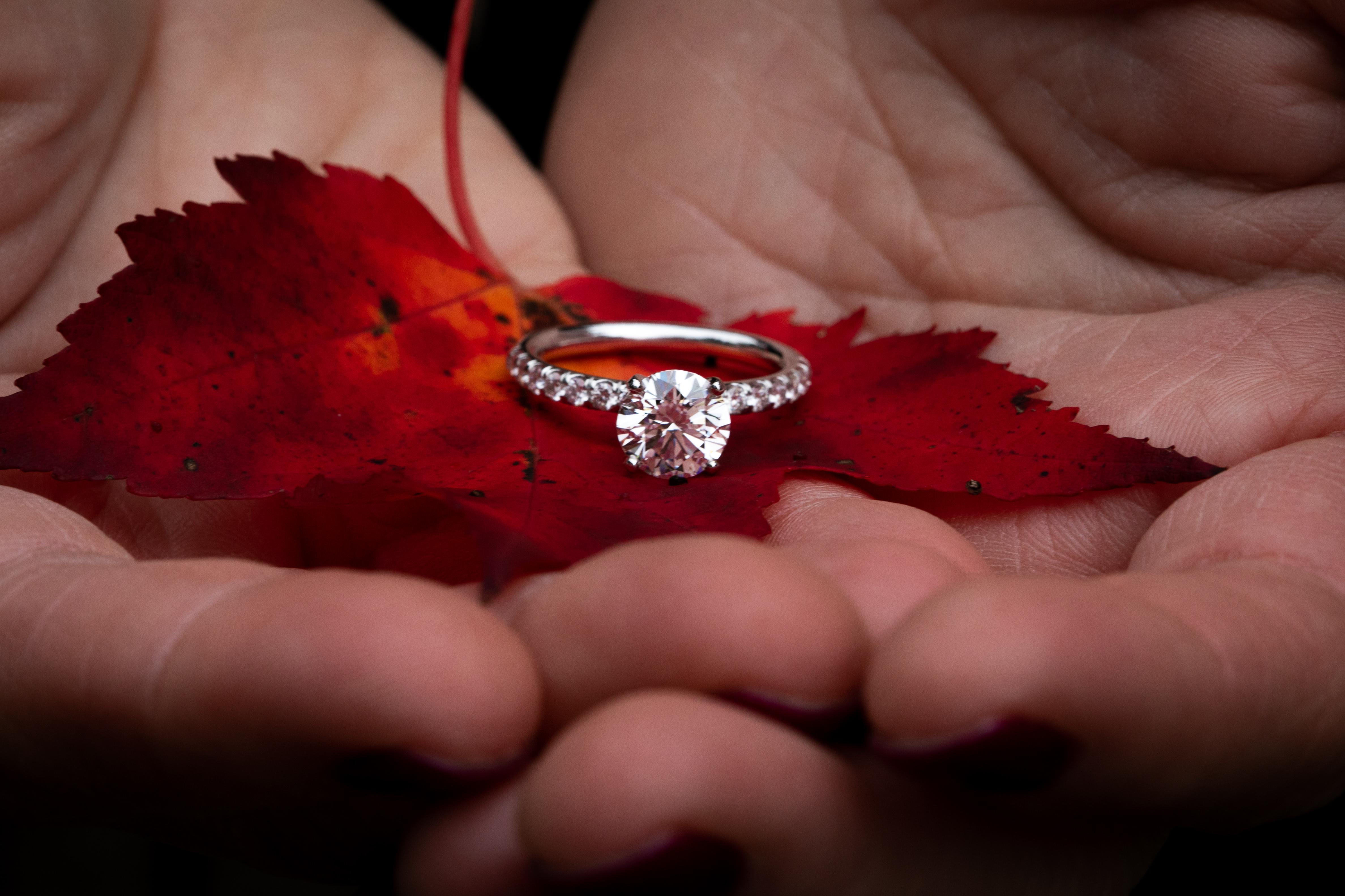 wedding photographer nh