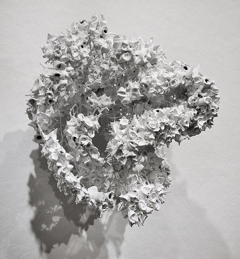 Bone_Dry.jpg