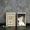 Thumbnail: MATCHBOX-BUTTERFLY