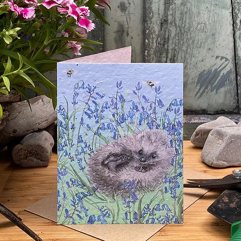 Hedgehog Plantable Seed Card