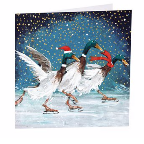 Christmas Quackers - 6 Pack