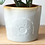 Thumbnail: GLAZED OMBRÉ 'SUNSHINE FRIENDS' PLANTER