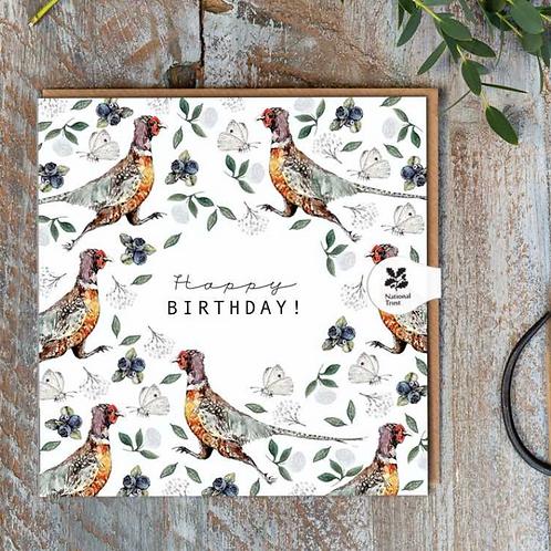 Happy Birthday (Pheasant Pure) Cello-Free