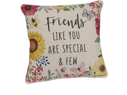 Special Friend Cushion