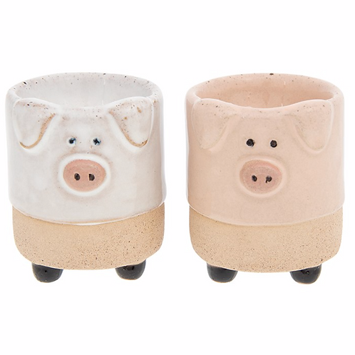 Pot Pals Egg Cup Pig