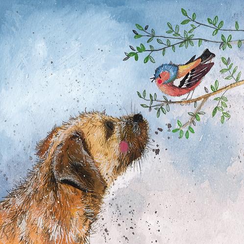 Oscar Border Terrier Dog Blank Card