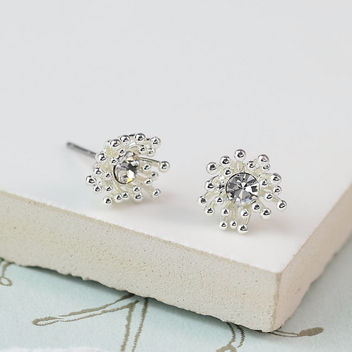 Silver plated cluster earrings with crystal