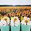 Thumbnail: Sunflower Fields Mallow